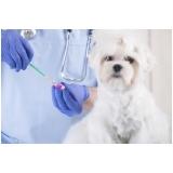 aonde tem vacinas de veterinária Bom Retiro