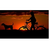 consulta veterinária para animais domésticos valor Sapopemba