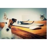 onde encontro atendimento veterinário residencial Liberdade