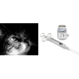 onde encontro vacina antirrábica gatos Brooklin