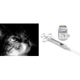 onde encontro vacina cinomose gatos Bom Retiro