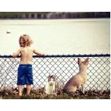 quanto custa atendimento para cães em casa Cambuci
