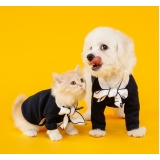 tratamento para feridas em cães Bela Vista