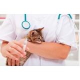 vacina subcutânea em gatos valor Capão Redondo
