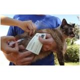 vacinação em animais preço Tucuruvi