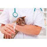 vacinação para gatos em casa valor Jardins