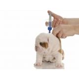 vacinas em cachorros filhotes valor São Domingos