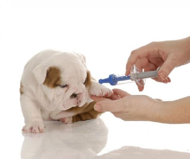 Vacinas Clinica Veterinária Preço Vila Esperança - Vacina em Animais